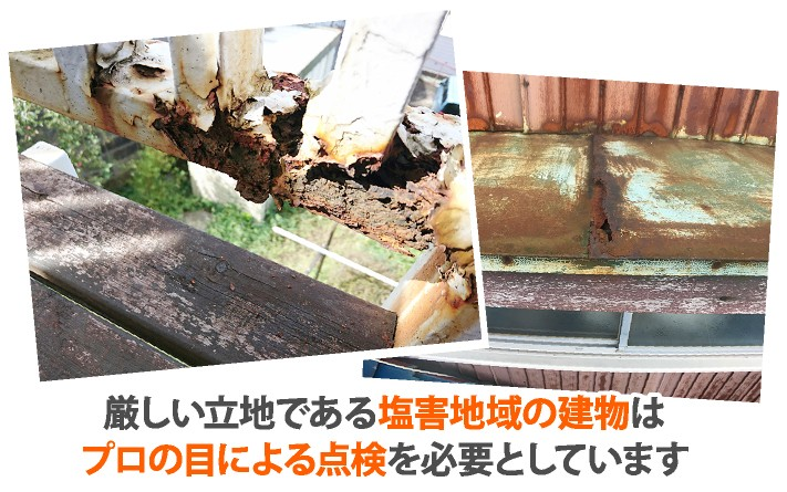 厳しい立地の塩害地域の建物の被害