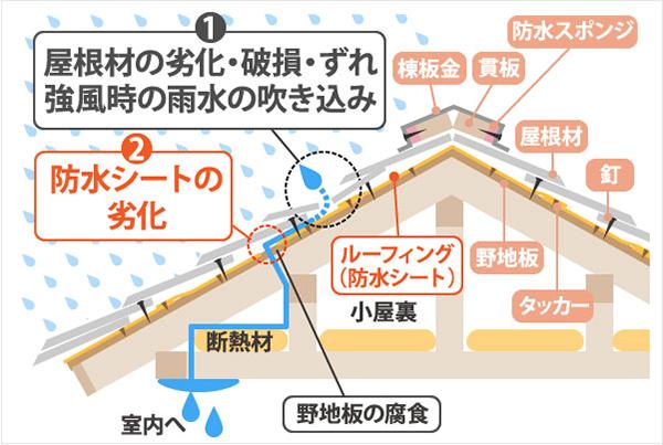 雨漏りの原因の図