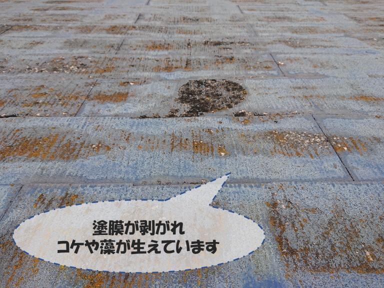 和歌山市でスレートの塗膜が剥がれ、コケが生えおり防水機能が低下していました