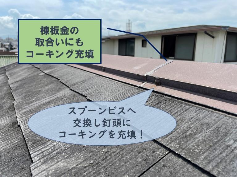 和歌山市で抜けかかった板金の釘をスプーンビスへ交換しコーキングを充填