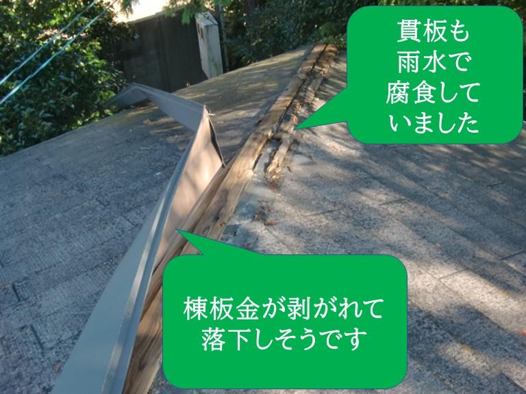 和歌山市で棟板金が落下しそうで、貫板(下地)も腐食していました