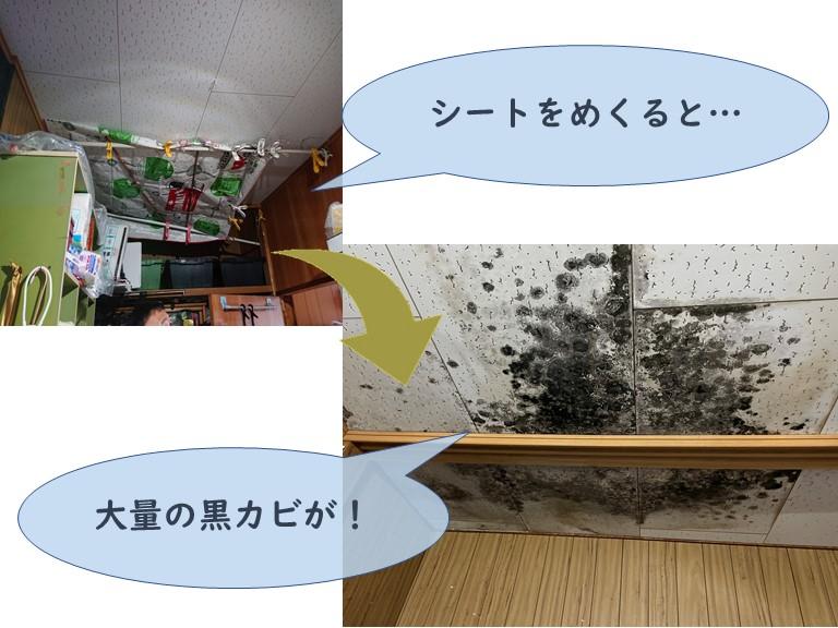 和歌山市で納戸の天井に黒カビ発生!ジプトーンで張り替えます