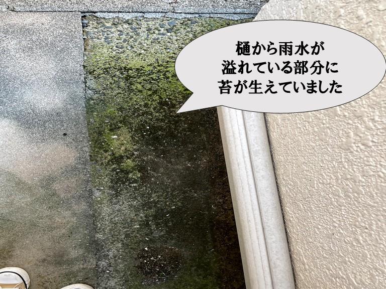 和歌山市で雨樋から雨水が溢れ地面にコケが生えています