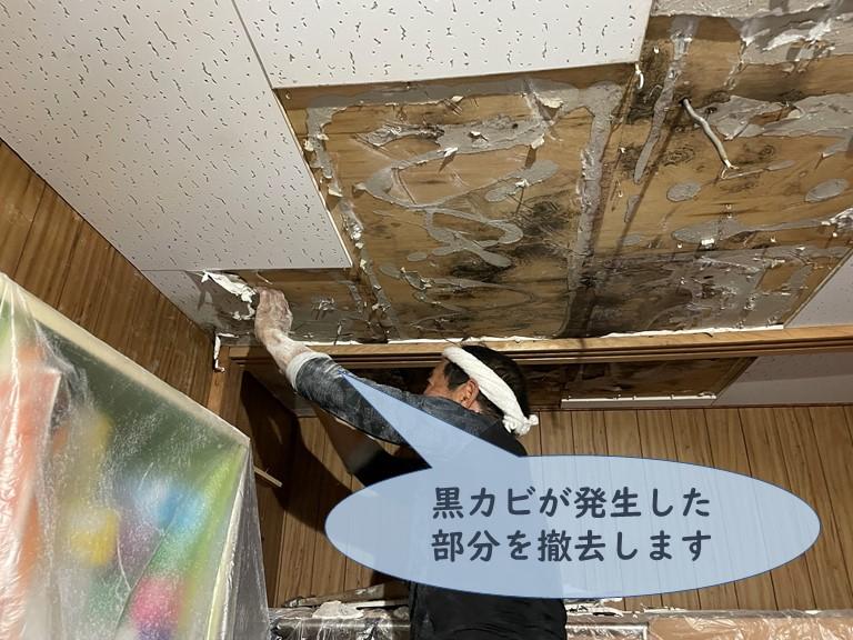 和歌山市で黒カビが発生した天井を撤去していきます