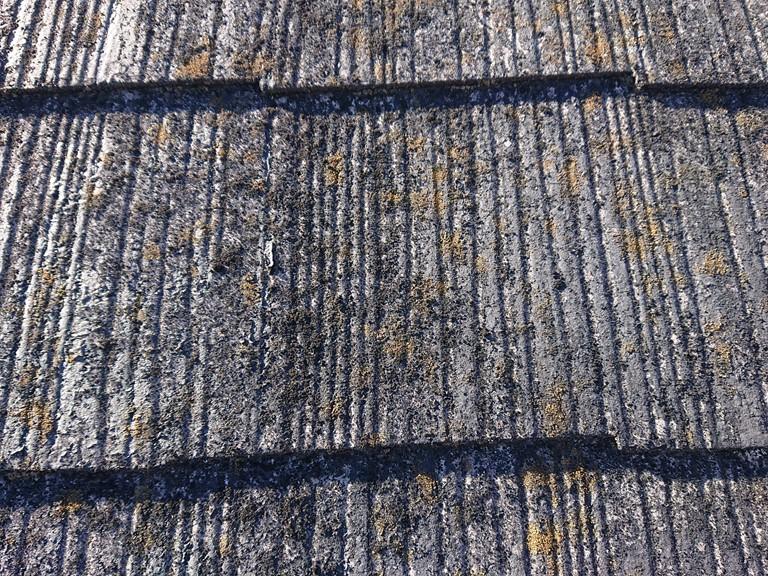 和歌山市のスレート屋根を調査すると、苔や藻が生えていました