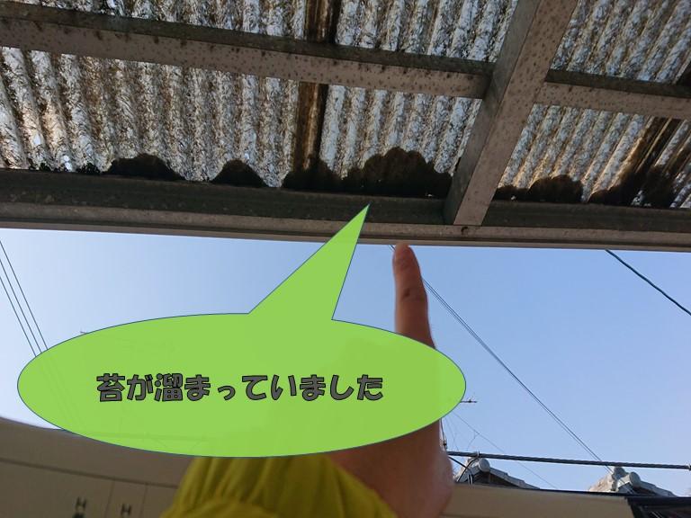 和歌山市のベランダ屋根の先に苔が詰まってました
