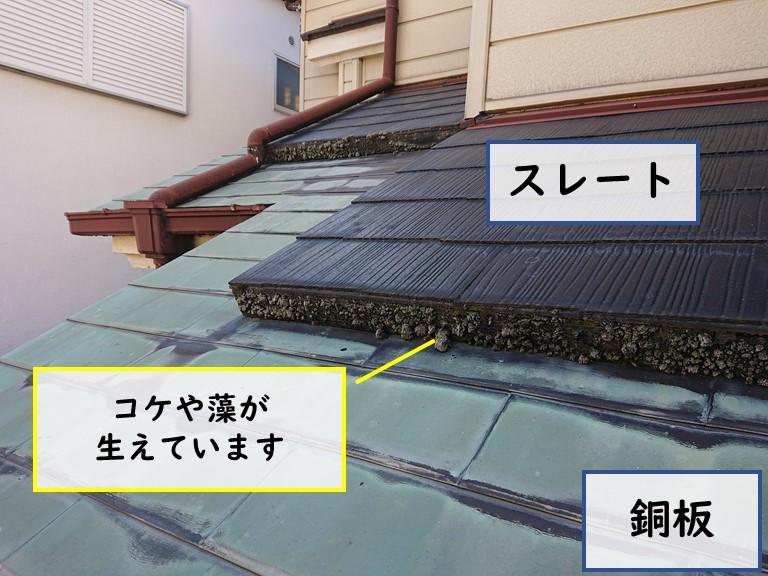 和歌山市の下屋を見ると、スレートと銅板の屋根がありスレート