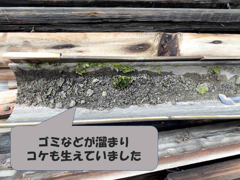 和歌山市の波板屋根の軒樋に土やゴミが溜まり苔も生えていました