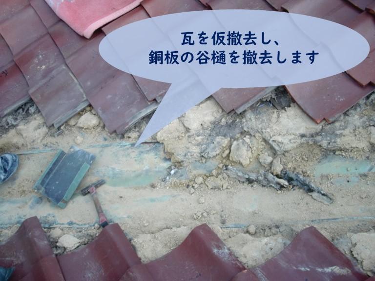 和歌山市の谷樋交換工事で銅板の谷樋を撤去し、瓦を仮撤去しました