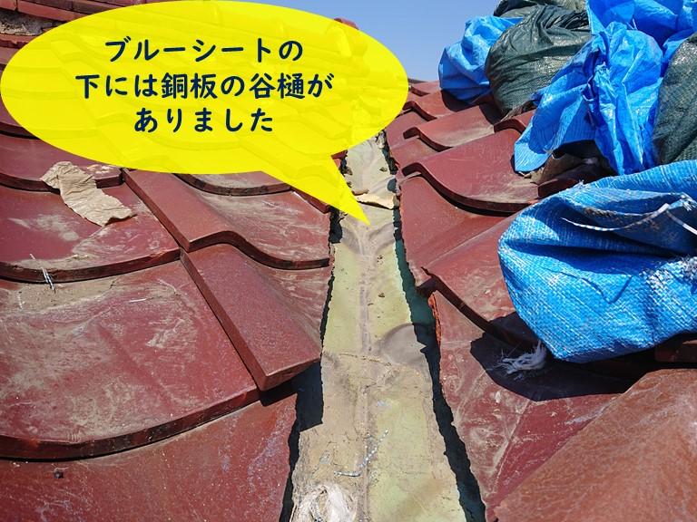 和歌山市の雨養生していた下には銅板の谷樋がありました