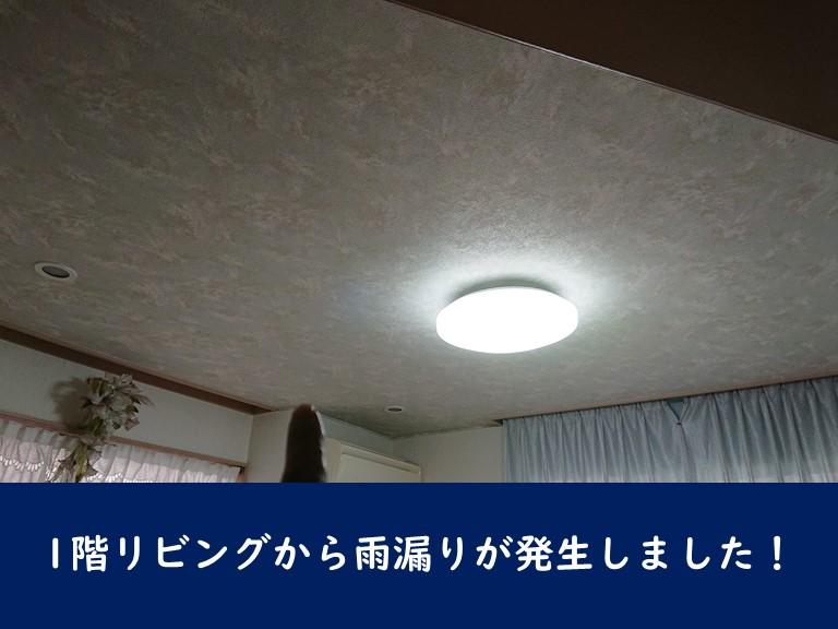 岩出市でリビングの天井から雨漏り発生