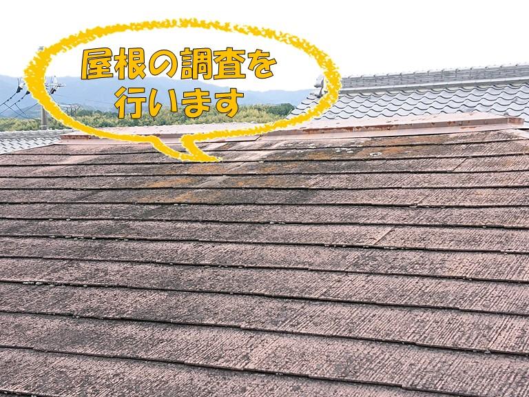 岩出市で屋根の調査を行いました