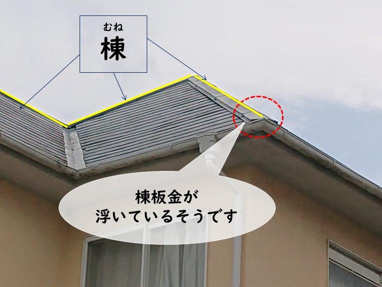 岩出市で棟板金が浮いていると聞き梯子で調査しました