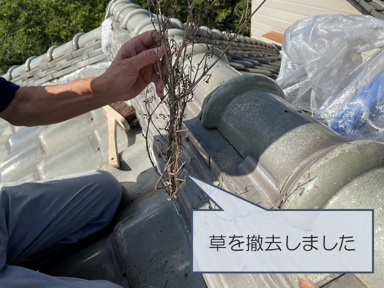 紀の川市で屋根に生えた雑草を撤去しました
