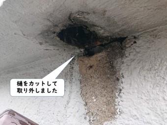 和歌山市の樋をカットして取り外しました