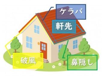 503e83f225e95240d7e7f21bc32e6b0f-simple