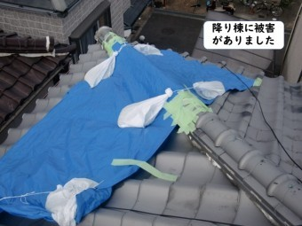 和歌山市の降り棟に被害がありました