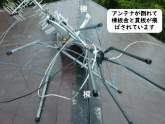 和歌山市のアンテナが倒れて棟板金と貫板が飛散