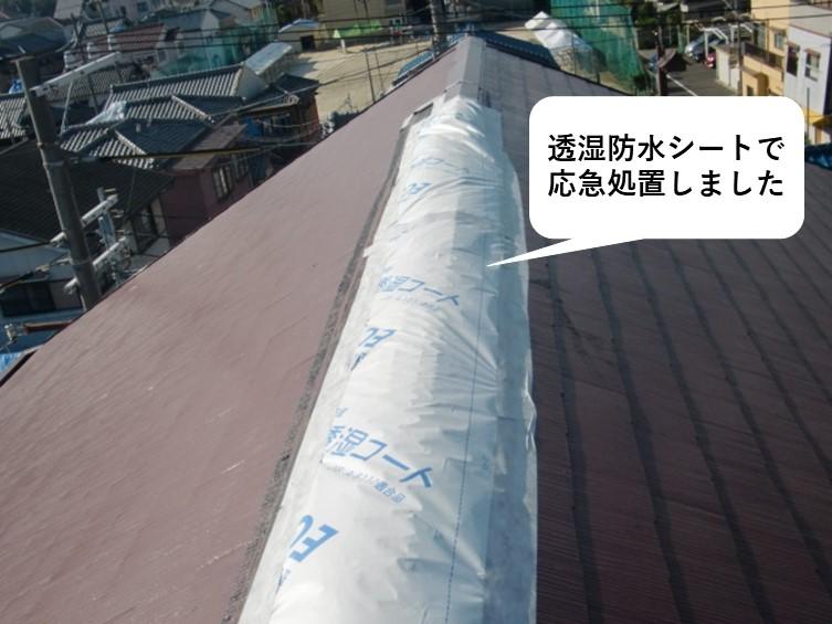 岩出市で台風の被害にあった家の屋根の応急処置
