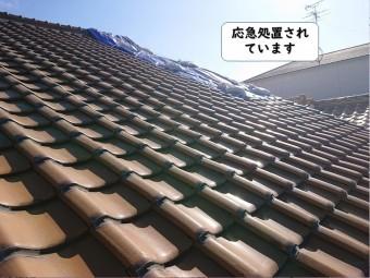 岩出市の屋根が応急処置されています