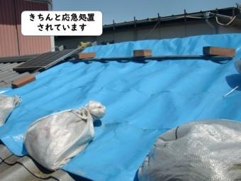 岩出市の屋根がきちんと応急処置されています