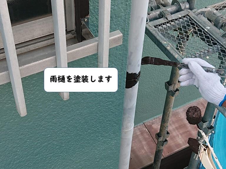 岩出市の雨樋を塗装