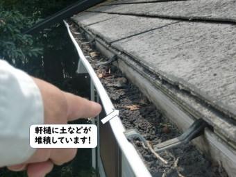 和歌山市の軒樋に土などが堆積
