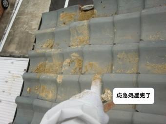 紀の川市の屋根の応急処置完了